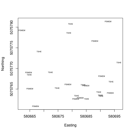Tree species and their locations in plot WREF_085