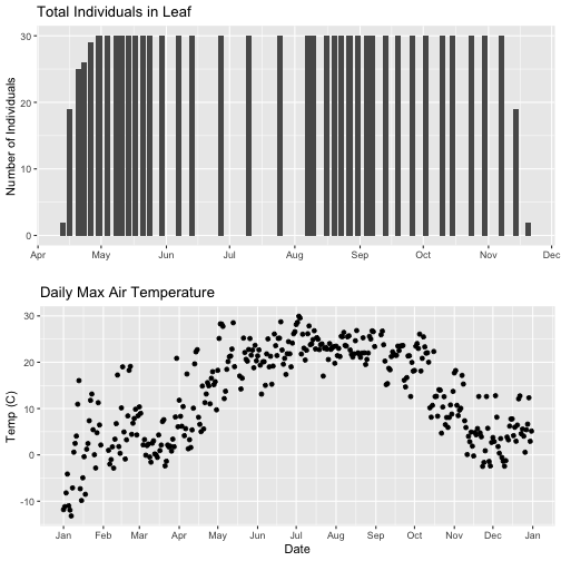 Graphic showing the arranged plots created in the previous step, with the x-axis formatted to only read 'month' in both plots. However, it is important to note that this step only partially fixes the problem. The plots still have different ranges on the x-axis, which makes it harder to see trends. The top plot shows a bar plot of the counts of Liriodendrum tulipifera (LITU) individuals at the Smithsonian Conservation Biology Institute (SCBI) for the year 2018. The bottom plot shows a scatter plot of daily maximum temperatures(of 30 minute interval means) for the year 2018 at the Smithsonian Conservation Biology Institute (SCBI).