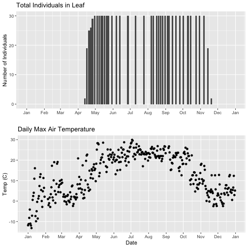 Graphic showing the arranged plots created in the previous step, with the x-axis formatted to only read 'month', and scaled so they align with each other. This is achieved by adding the limits parameter to the scale_x_date function in the ggplot call. The top plot shows a bar plot of the counts of Liriodendrum tulipifera (LITU) individuals at the Smithsonian Conservation Biology Institute (SCBI) for the year 2018. The bottom plot shows a scatter plot of daily maximum temperatures(of 30 minute interval means) for the year 2018 at the Smithsonian Conservation Biology Institute (SCBI).