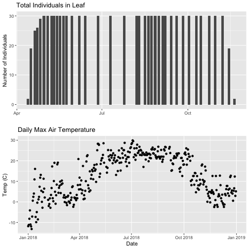 One graphic showing two plots arranged vertically by using the grid.arrange function form the gridExtra package. The top plot shows a bar plot of the counts of Liriodendrum tulipifera (LITU) individuals at the Smithsonian Conservation Biology Institute (SCBI) for the year 2018. The bottom plot shows a scatter plot of daily maximum temperatures(of 30 minute interval means) for the year 2018 at the Smithsonian Conservation Biology Institute (SCBI).