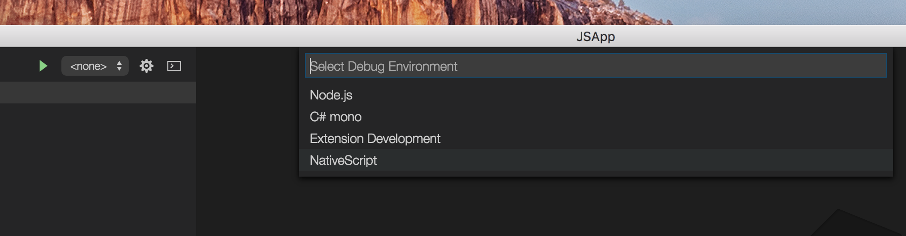 NativeScript debug settings