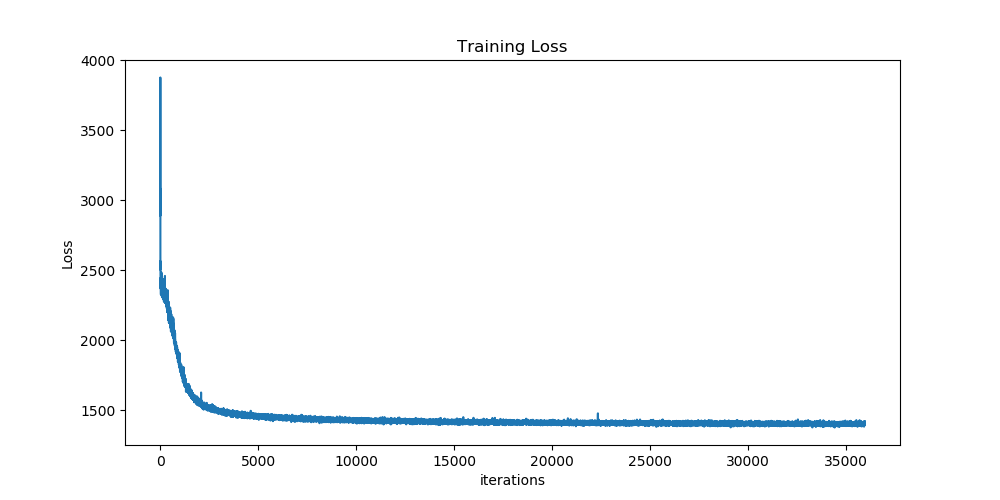 Training Loss Curves