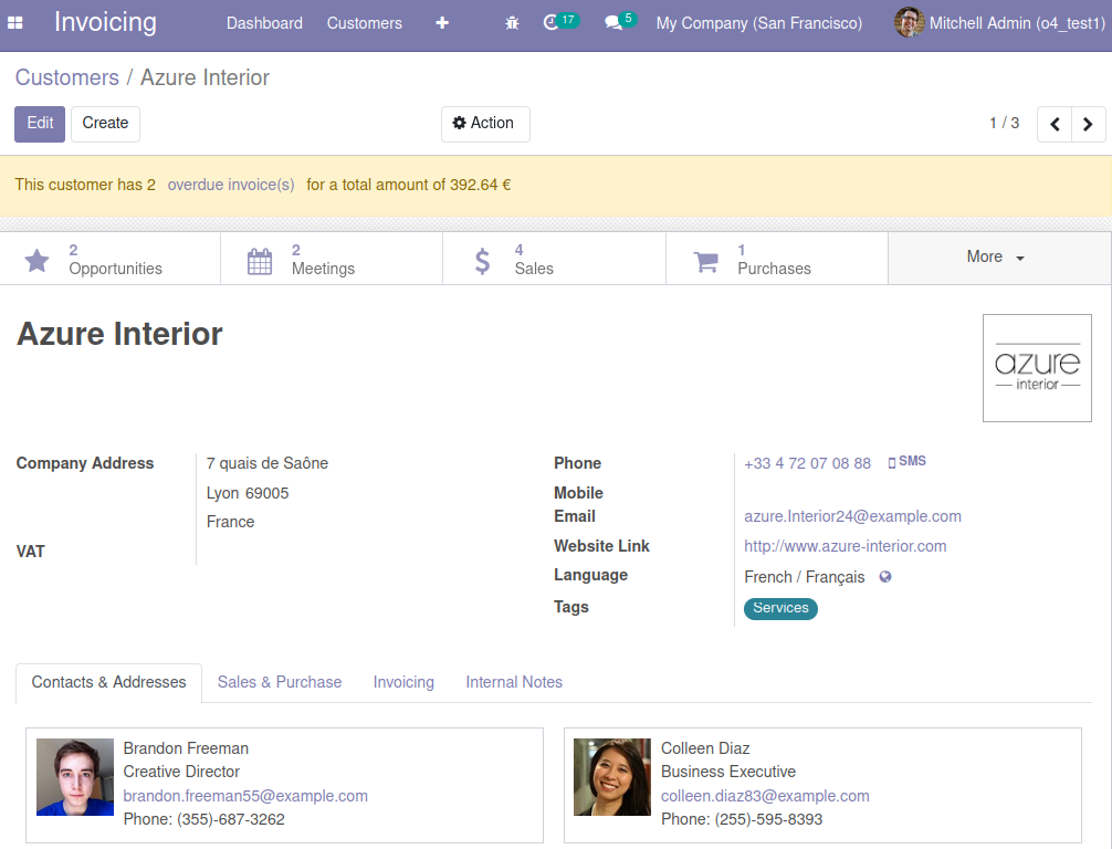 Screenshot of partner form view