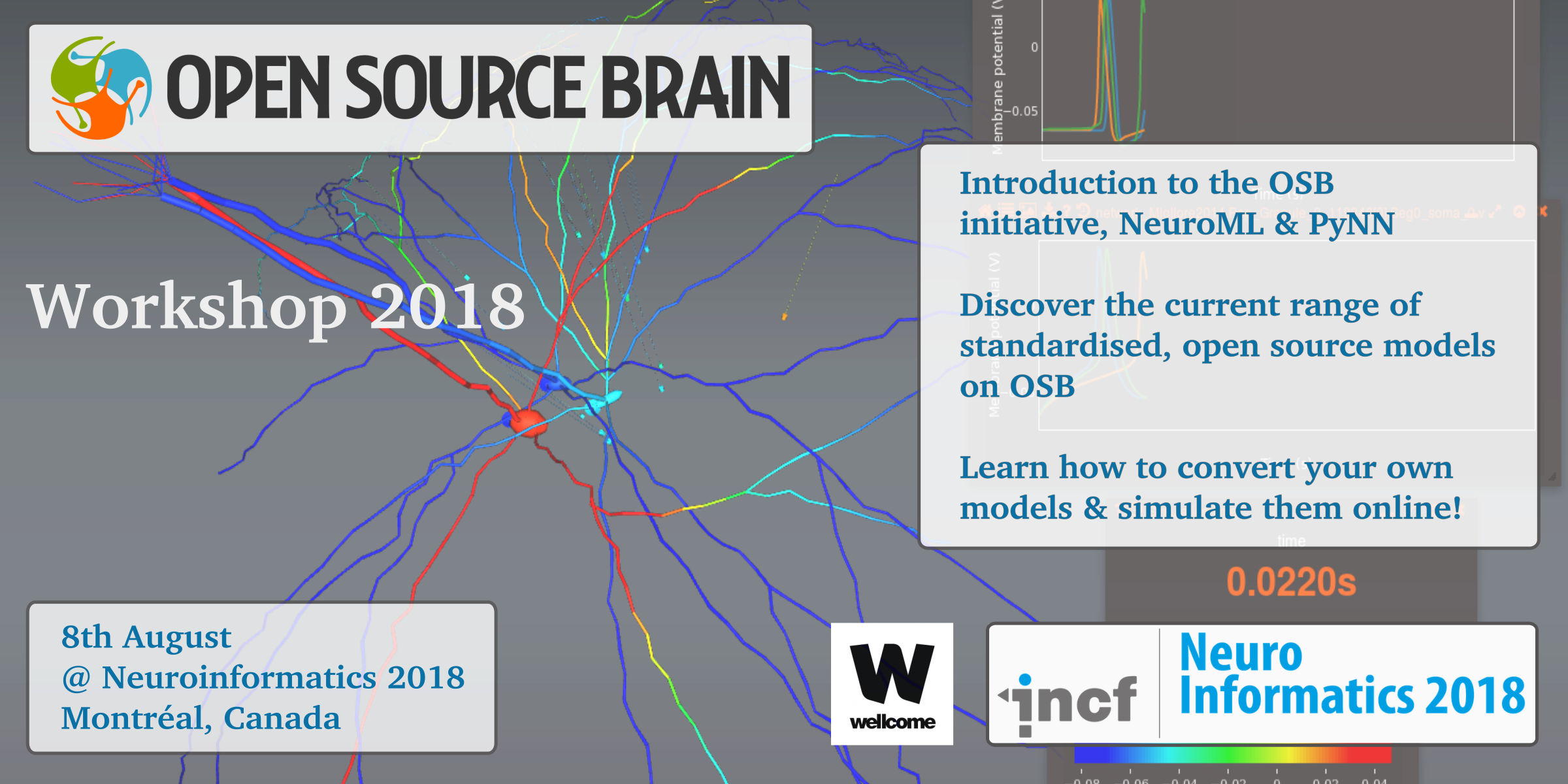 Open Source Brain