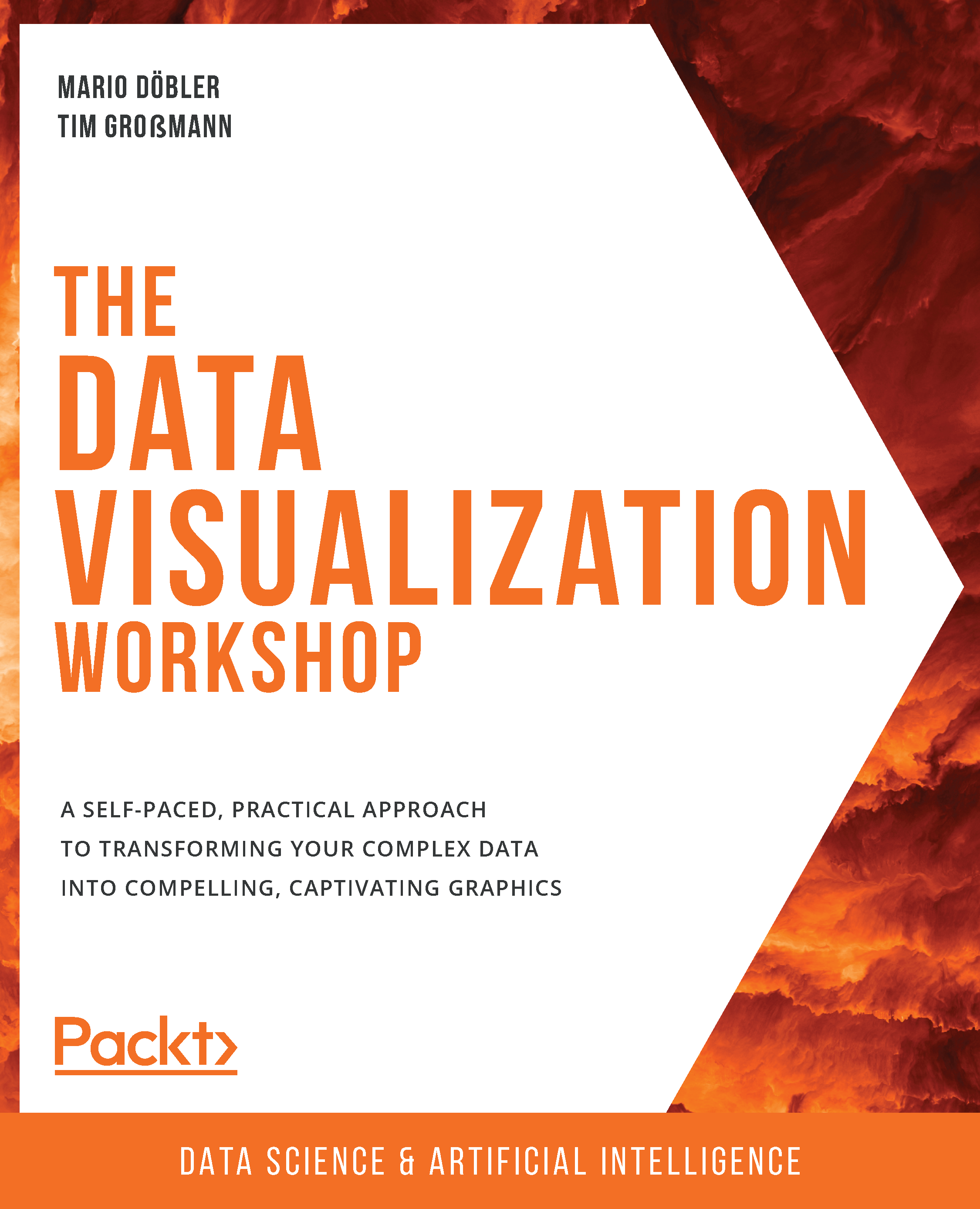 The Data Visualization Workshop