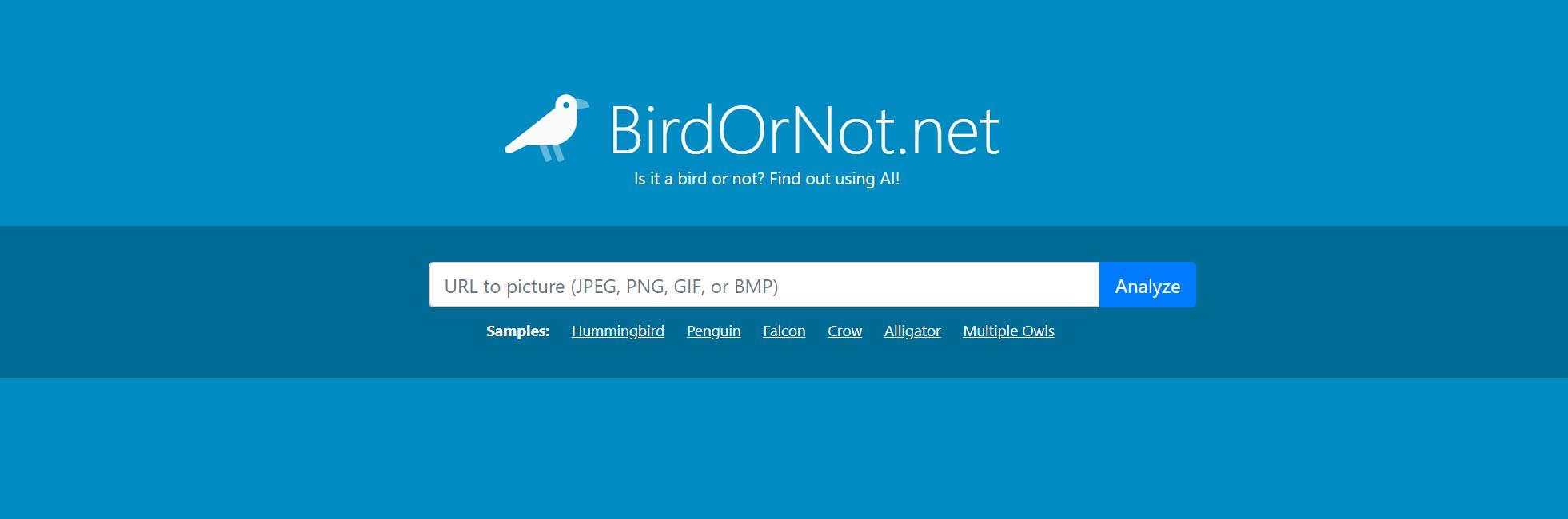 BirdOrNot.net