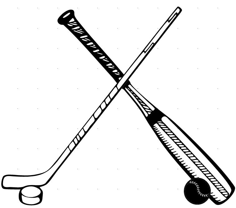 Hockey and Baseball: Are they really that different?