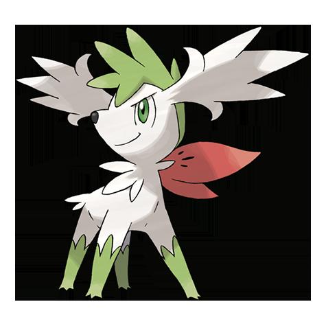 Pokémon shaymin-sky