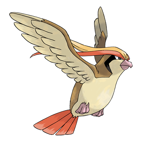 Pokémon pidgeot