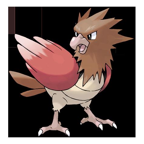 Pokémon spearow