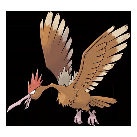 Pokémon fearow