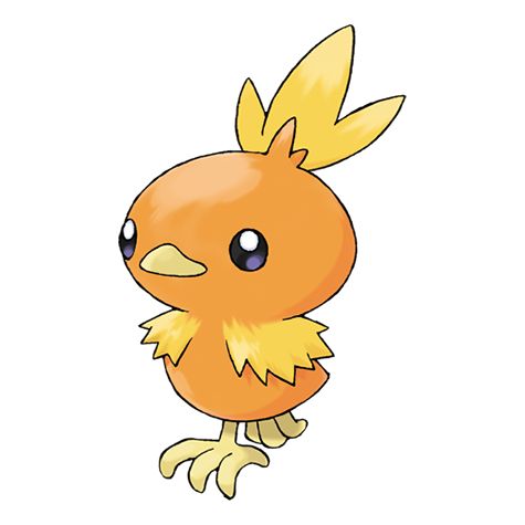 Pokémon torchic
