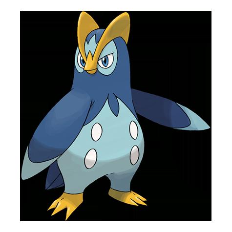 Pokémon prinplup