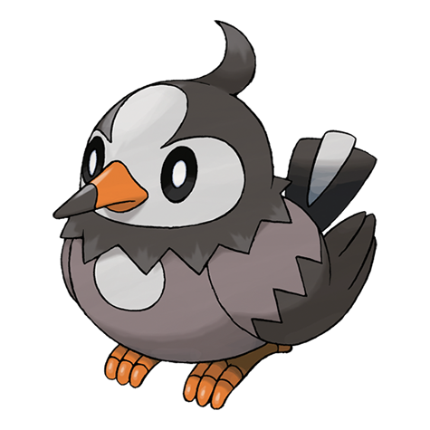 Pokémon starly