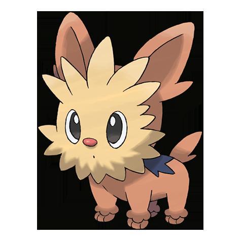 Pokémon lillipup