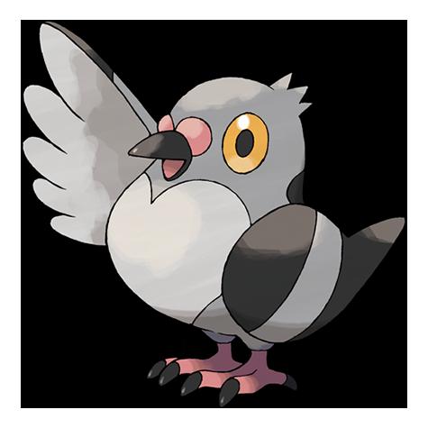 Pokémon pidove