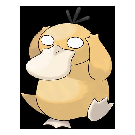 Pokémon psyduck