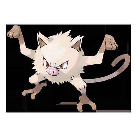 Pokémon mankey