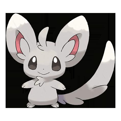 Pokémon minccino