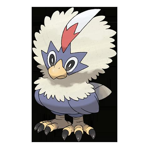 Pokémon rufflet