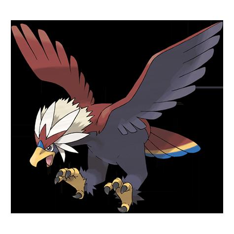 Pokémon braviary