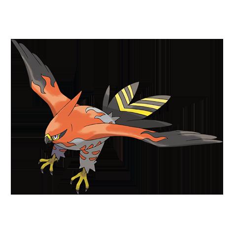 Pokémon talonflame