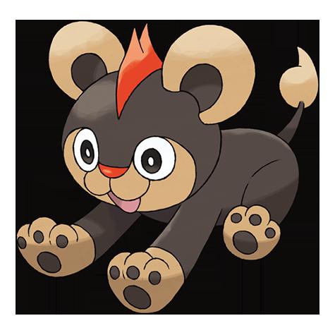 Pokémon litleo