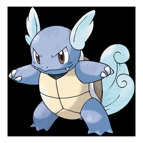 Pokémon wartortle