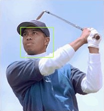 Tiger Woods' face