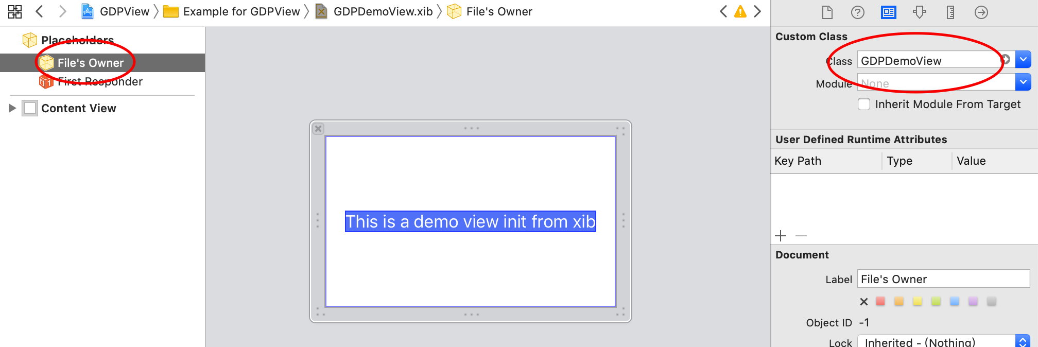 1. files owner set to gdpdemoview