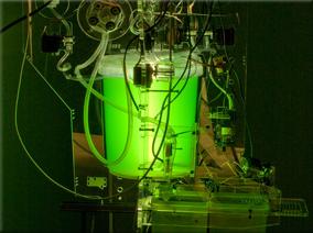 A spirulina reactor from blablaLab in Spain