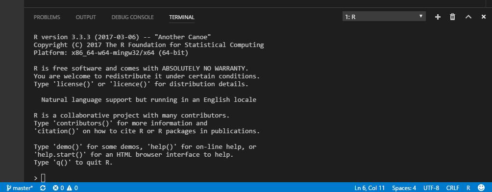 Create R terminal
