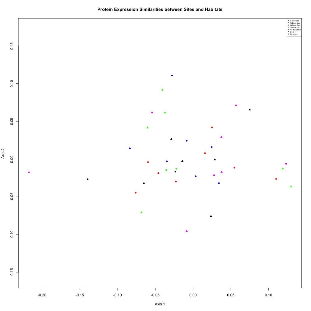 NMDS-adj-averaged