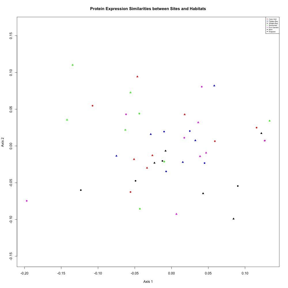 NMDS-averaged