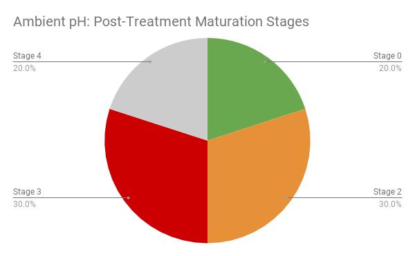post-maturation-stage-amb