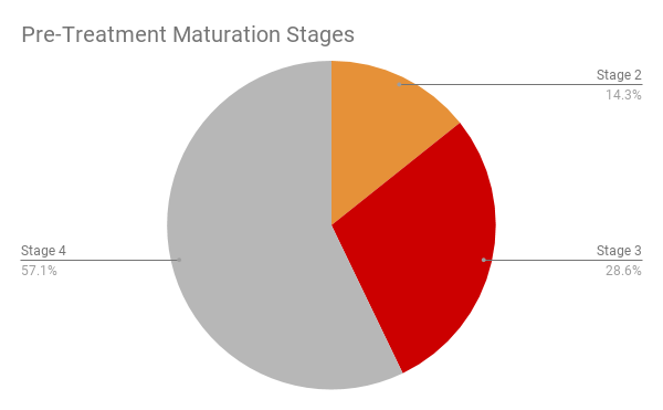 pre-maturation-stage
