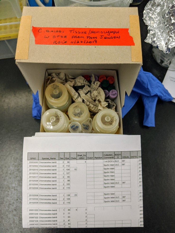 Image of sample storage box