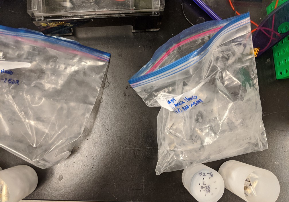 low pH samples removed from bag