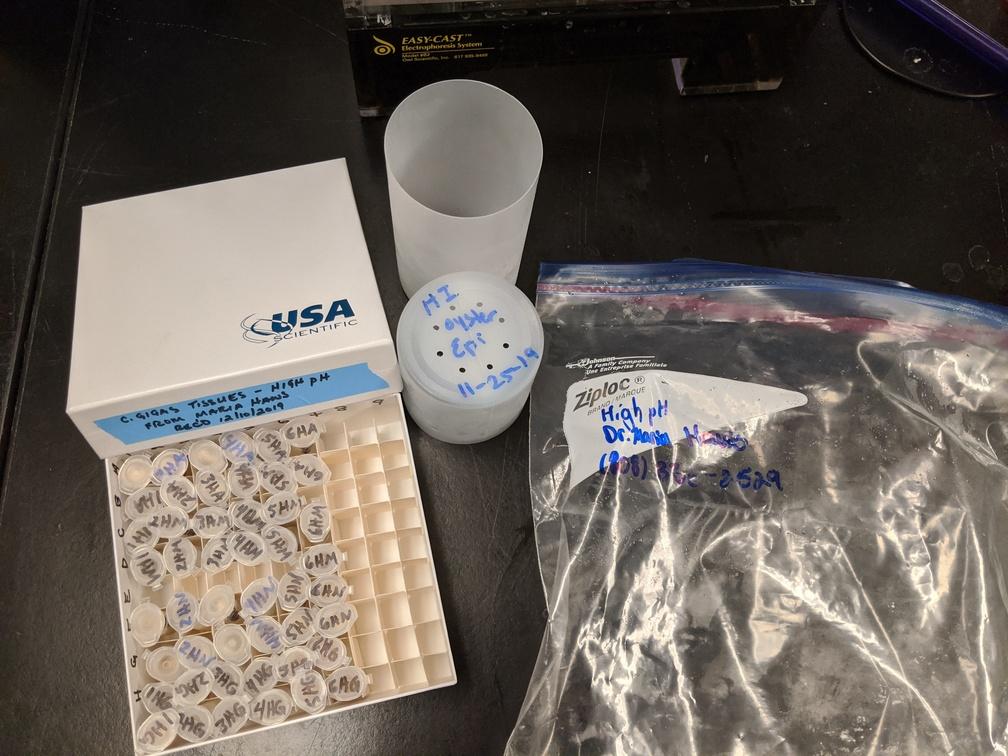high pH samples in freezer box