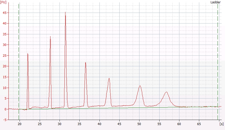 RNA Pico 6000 ladder electropherogram