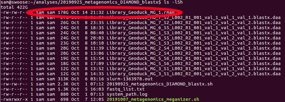 Screencap showing 178GB MEGAN6 file size for a single sample