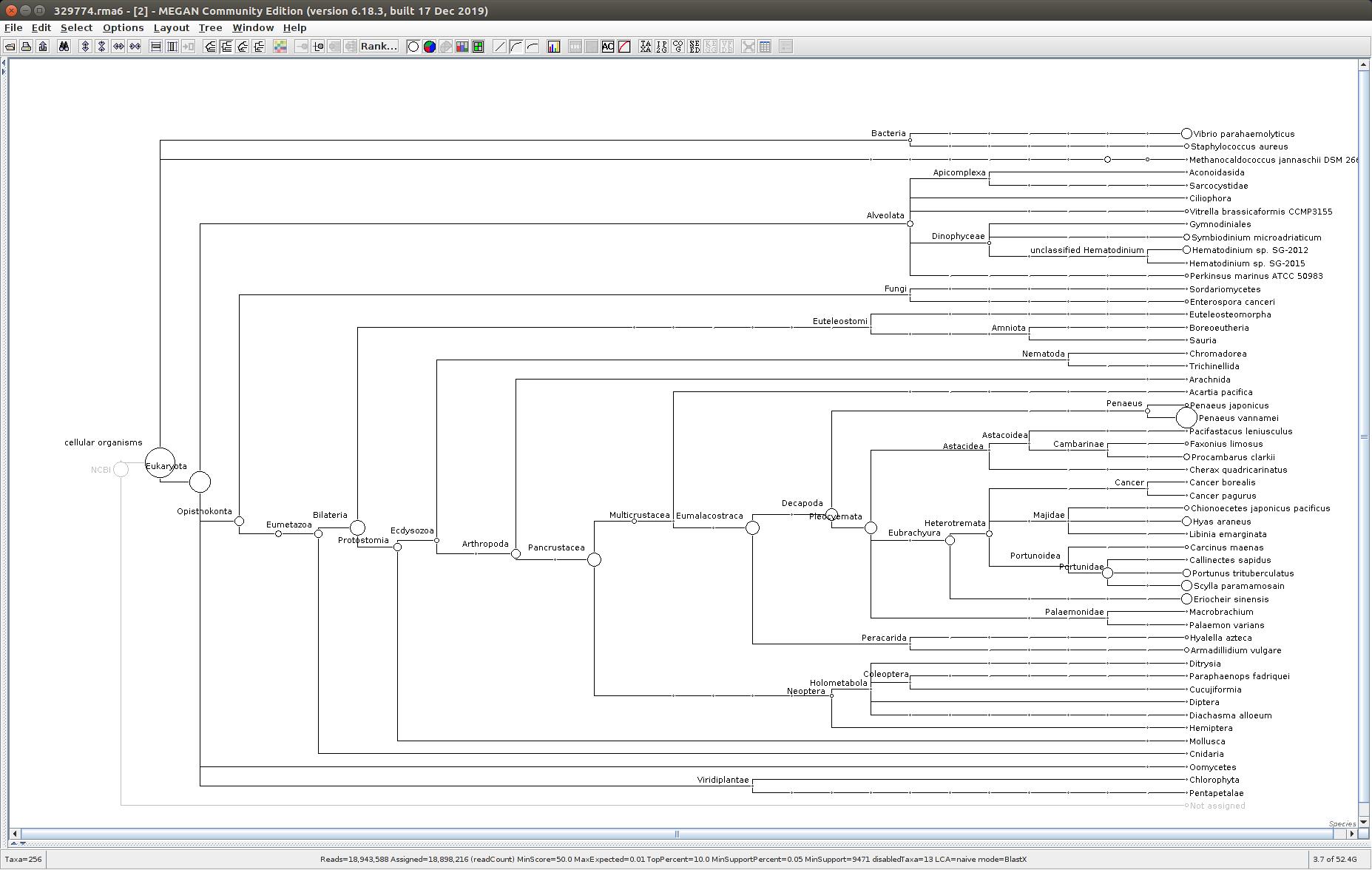 329774 MEGAN6 taxonomic tree