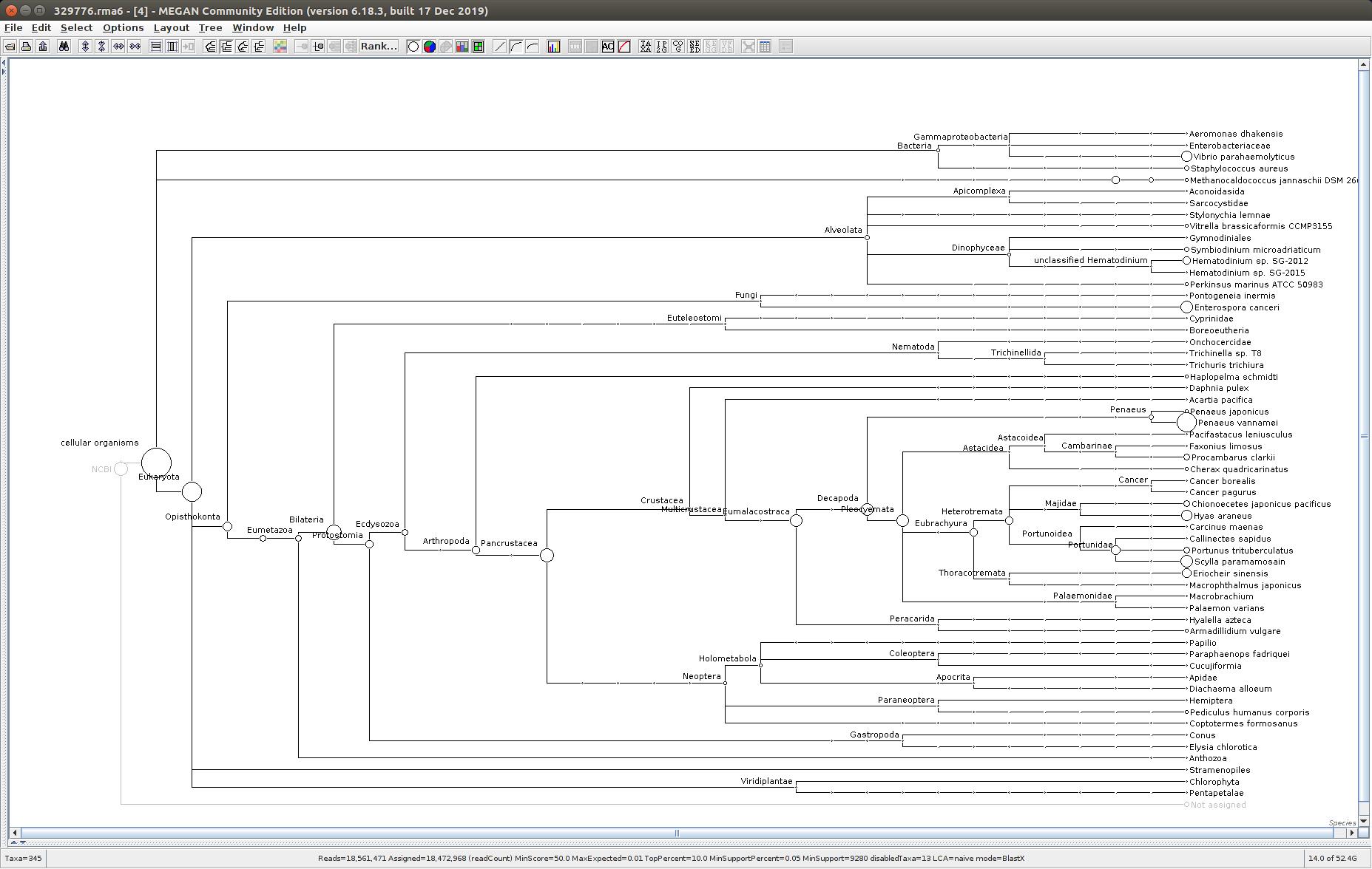 329776 MEGAN6 taxonomic tree