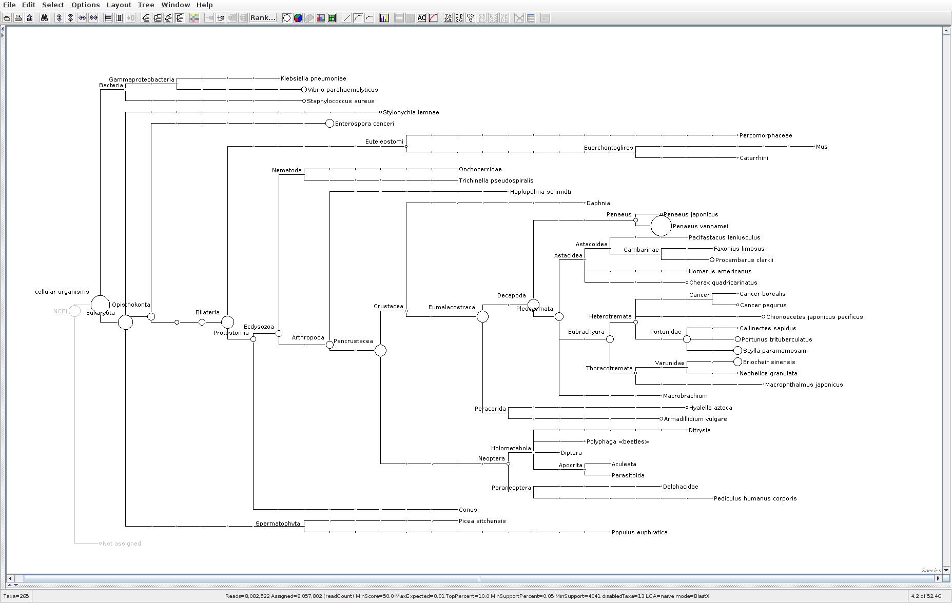 113 MEGAN6 taxonomic tree