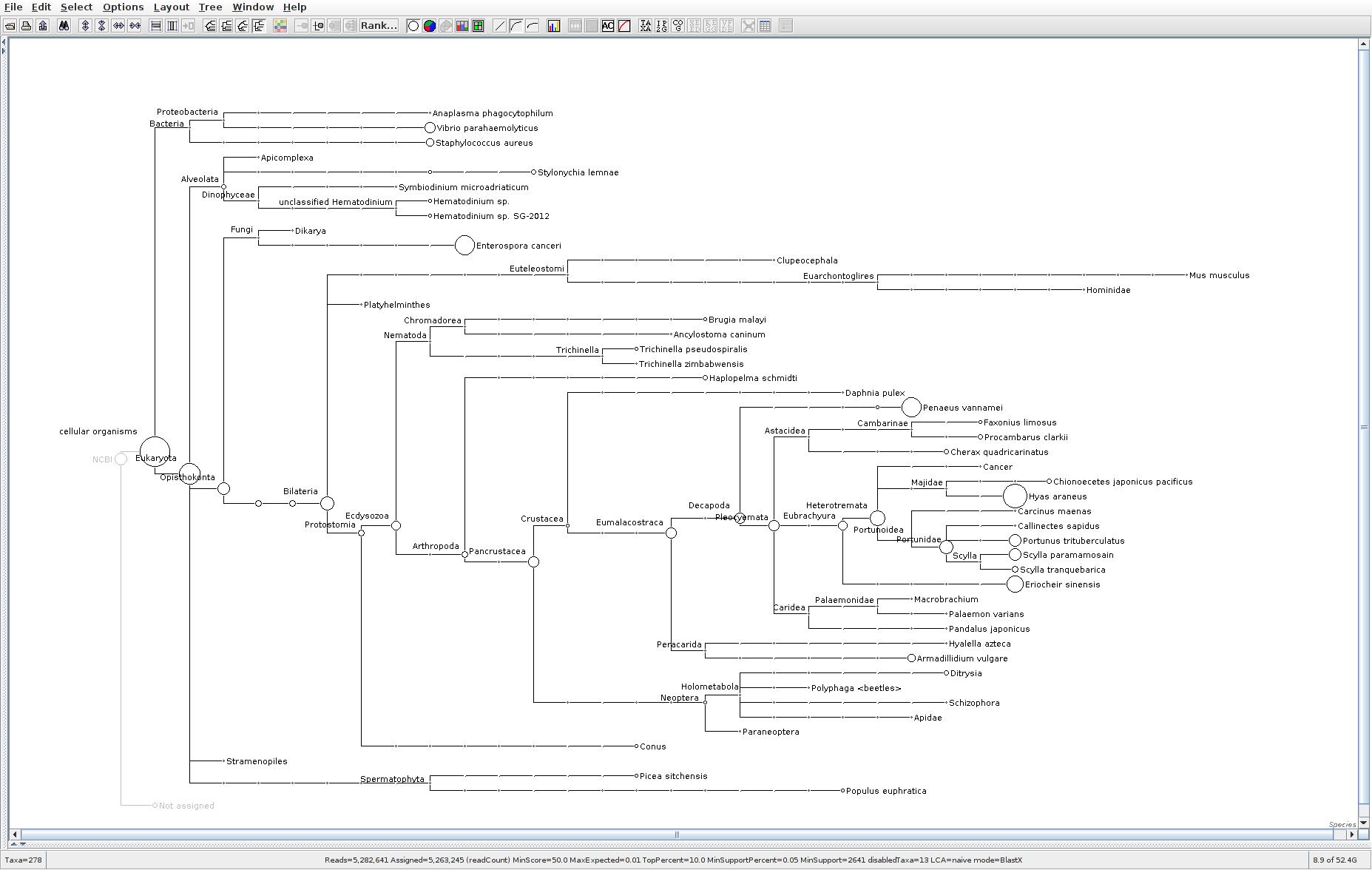 118 MEGAN6 taxonomic tree