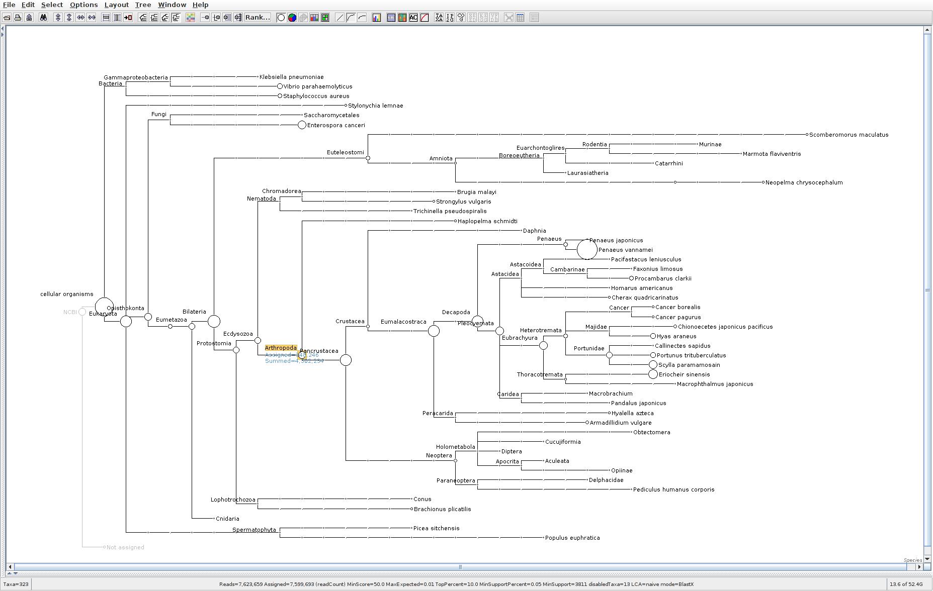 127 MEGAN6 taxonomic tree