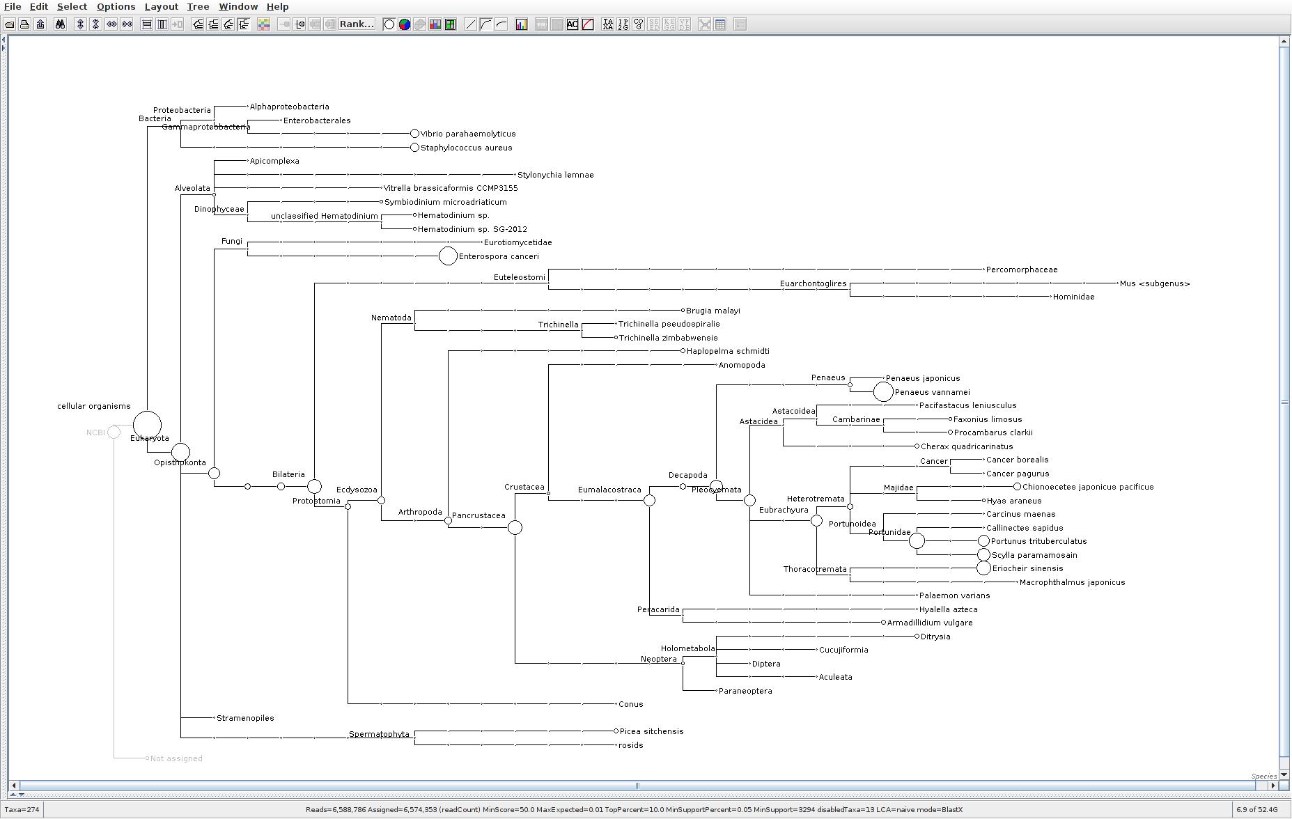 132 MEGAN6 taxonomic tree