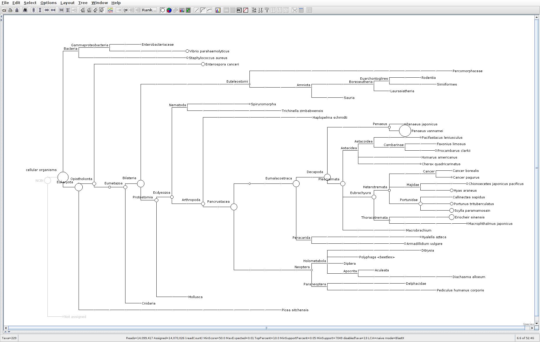 151 MEGAN6 taxonomic tree