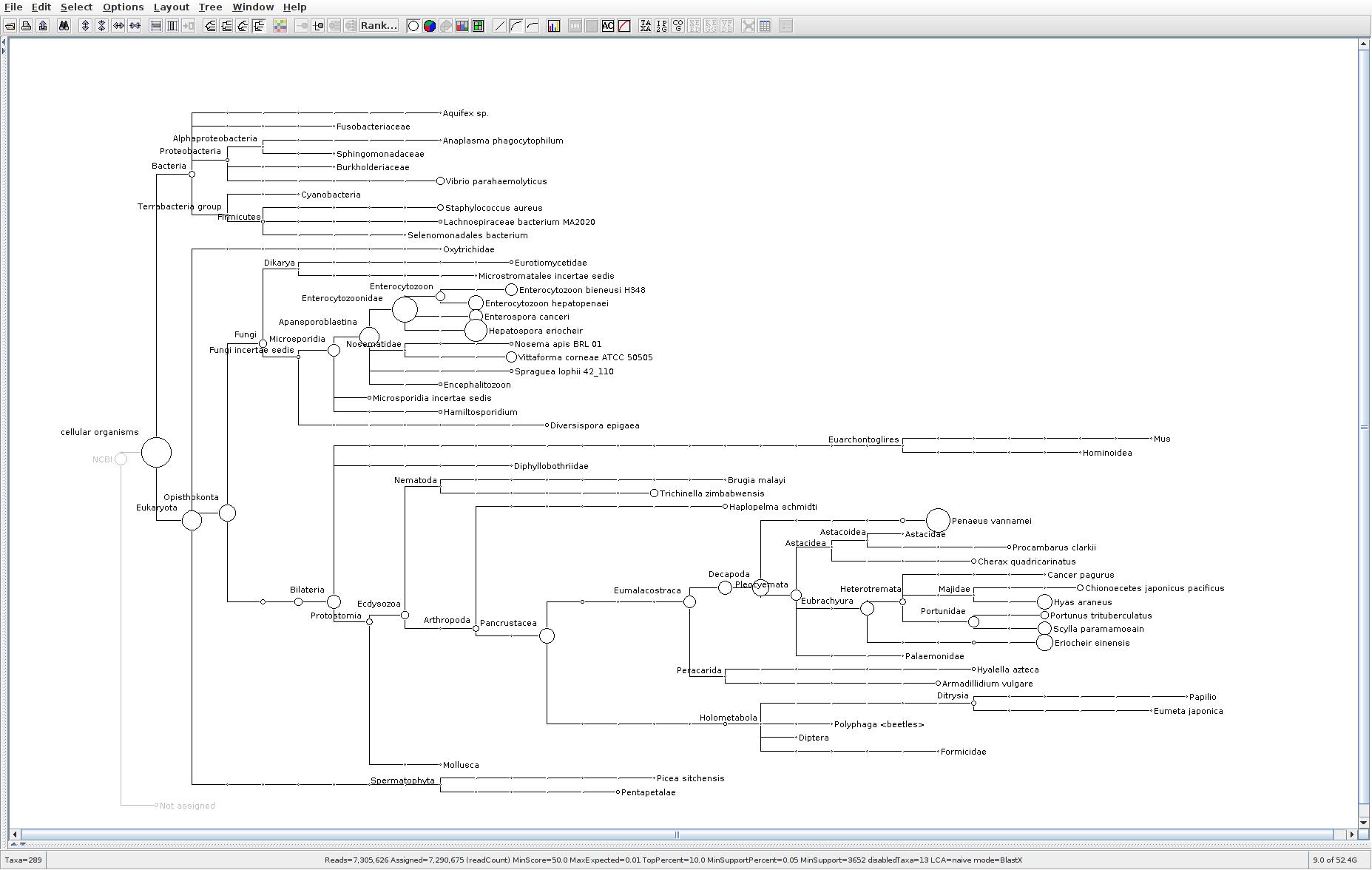 173 MEGAN6 taxonomic tree