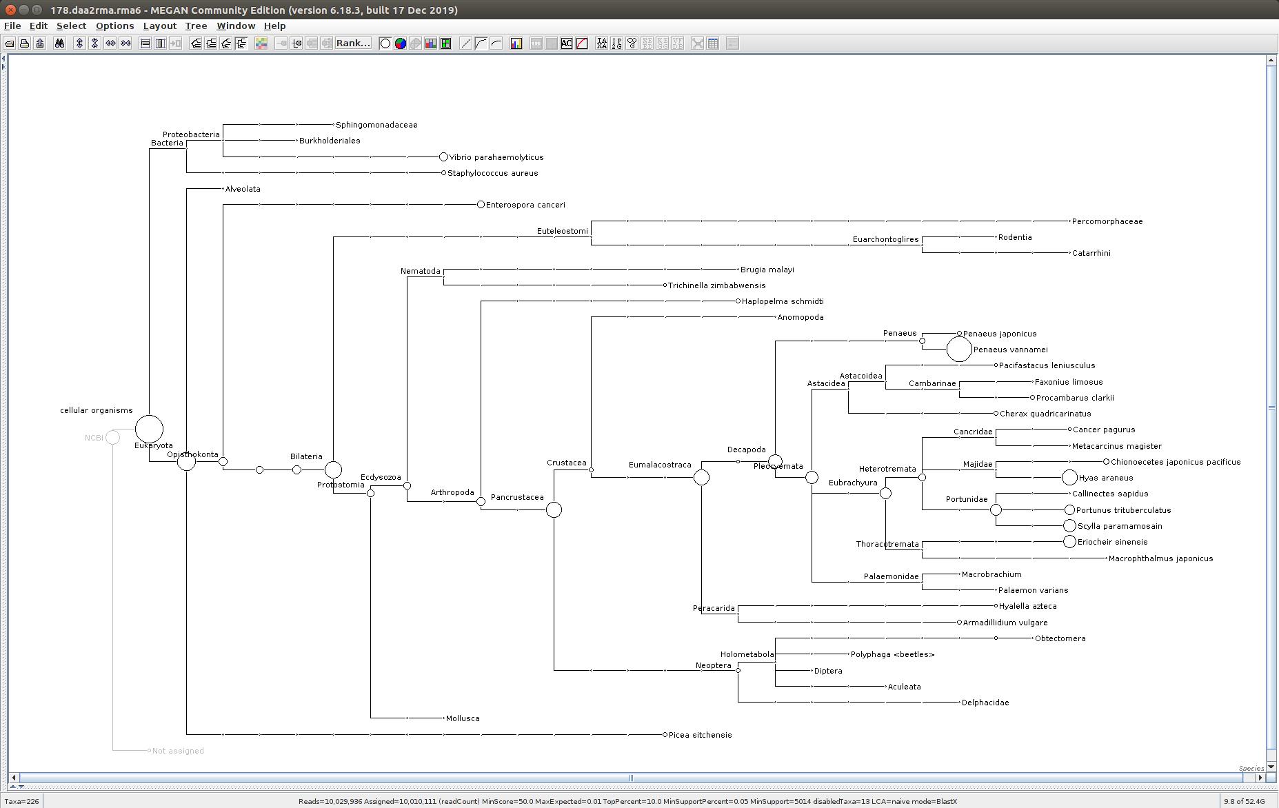 178 MEGAN6 taxonomic tree